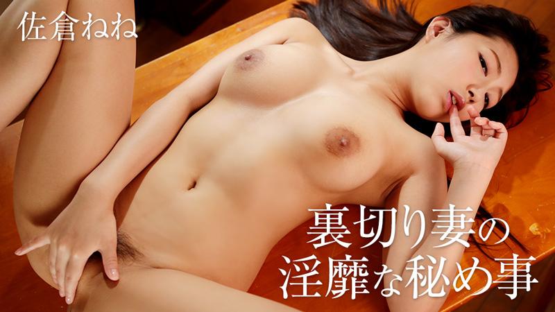 裏切り妻の淫靡な秘め事 / HEYZO