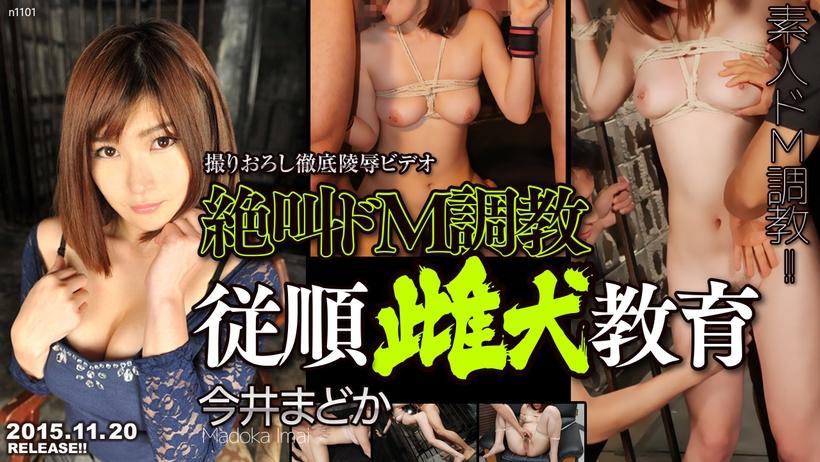 絶叫ドM調教従順雌犬教育 / TOKYO-HOT