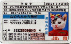 みけ子の運転免許証はIDにはなりません。
